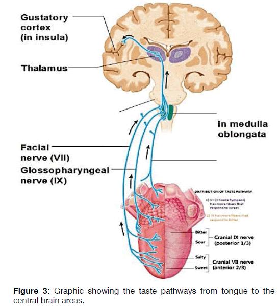 Tinnitus-tongue